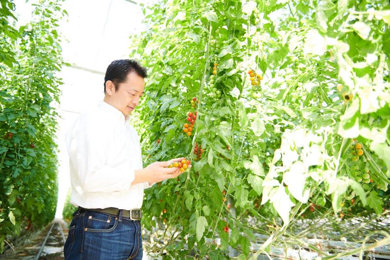 AGRIOS、井出トマト農園、井出寿利